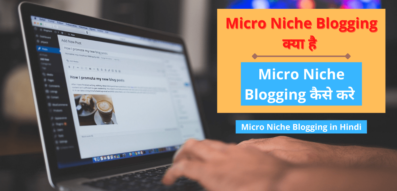 Micro Niche Blogging in Hindi